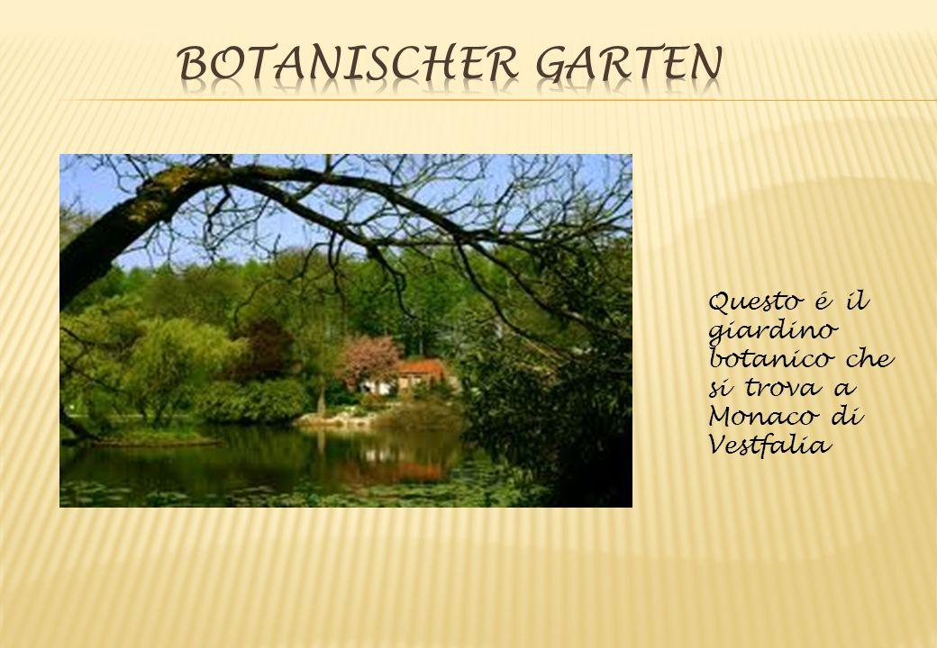Botanischer Garten Questo é il giardino botanico che si trova a Monaco di Vestfalia