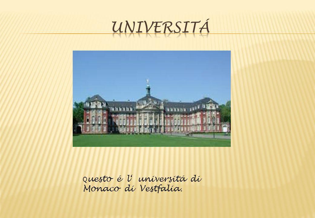 Universitá Questo é l' universitá di Monaco di Vestfalia.