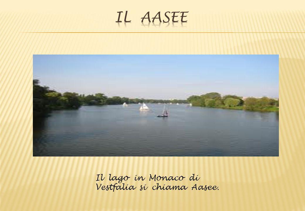 Il Aasee Il lago in Monaco di Vestfalia si chiama Aasee.