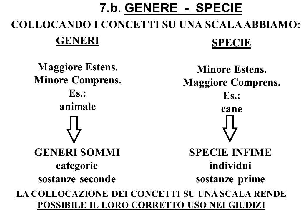 7.b. GENERE - SPECIE COLLOCANDO I CONCETTI SU UNA SCALA ABBIAMO: