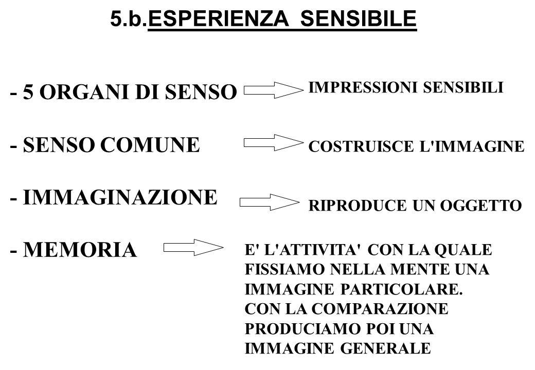 5.b.ESPERIENZA SENSIBILE