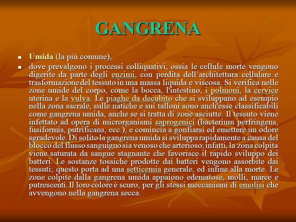 GANGRENA Umida (la più comune),