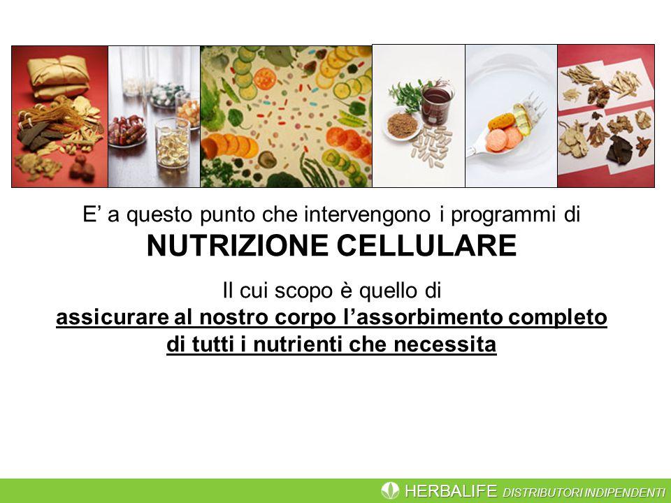 E' a questo punto che intervengono i programmi di NUTRIZIONE CELLULARE
