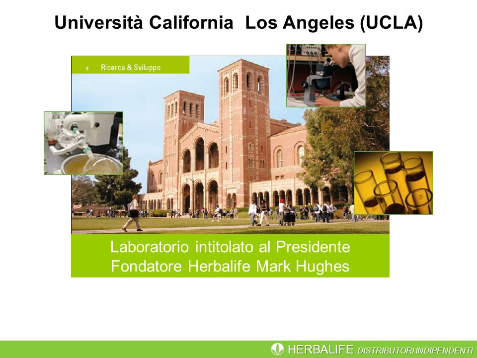 Università California Los Angeles (UCLA)