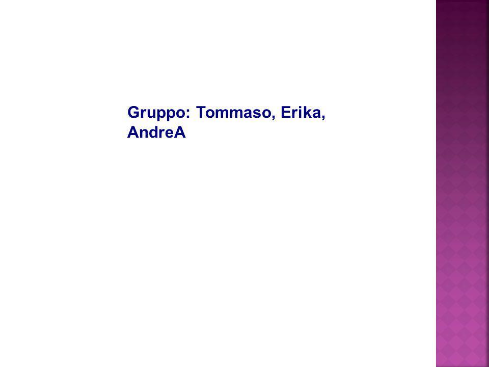 Gruppo: Tommaso, Erika, AndreA
