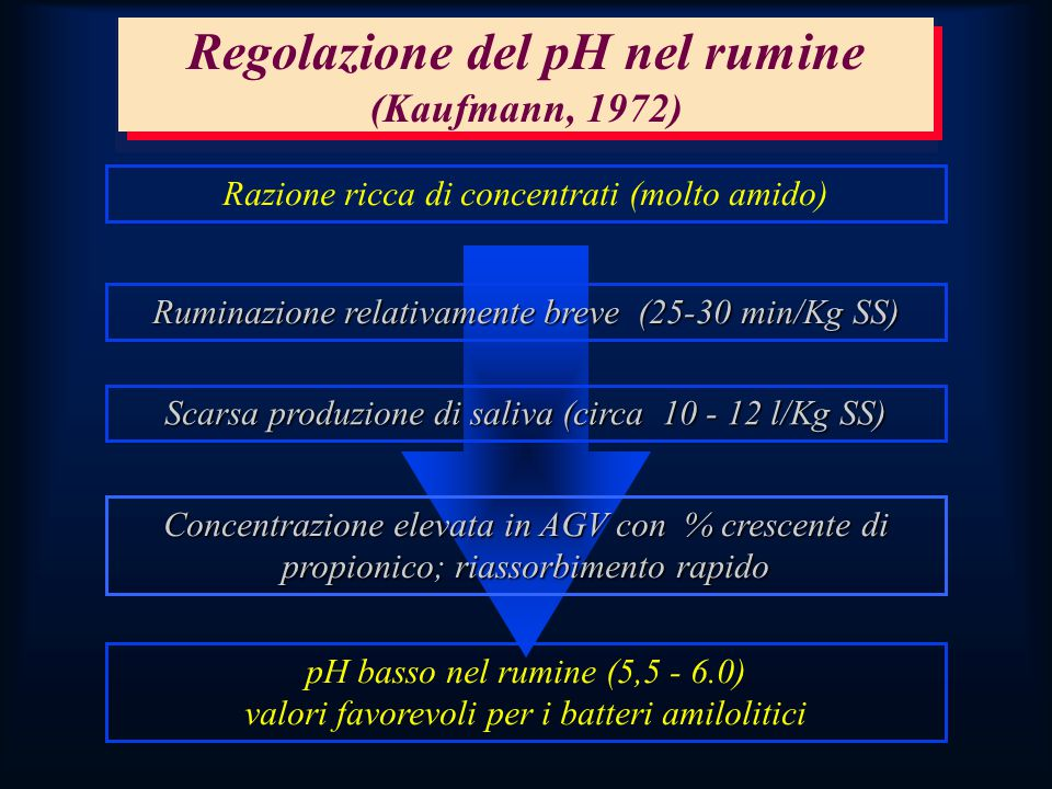 Regolazione del pH nel rumine (Kaufmann, 1972)