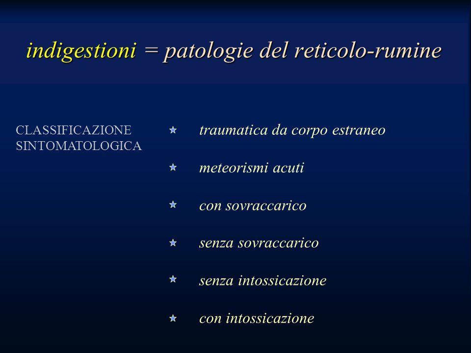 indigestioni = patologie del reticolo-rumine
