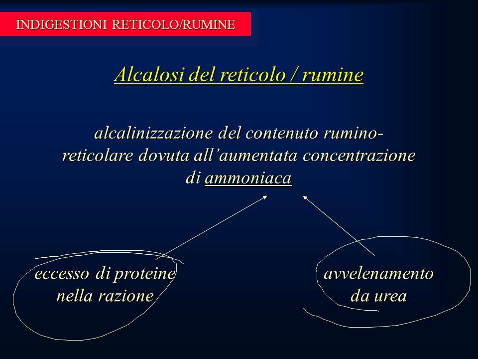 INDIGESTIONI RETICOLO/RUMINE