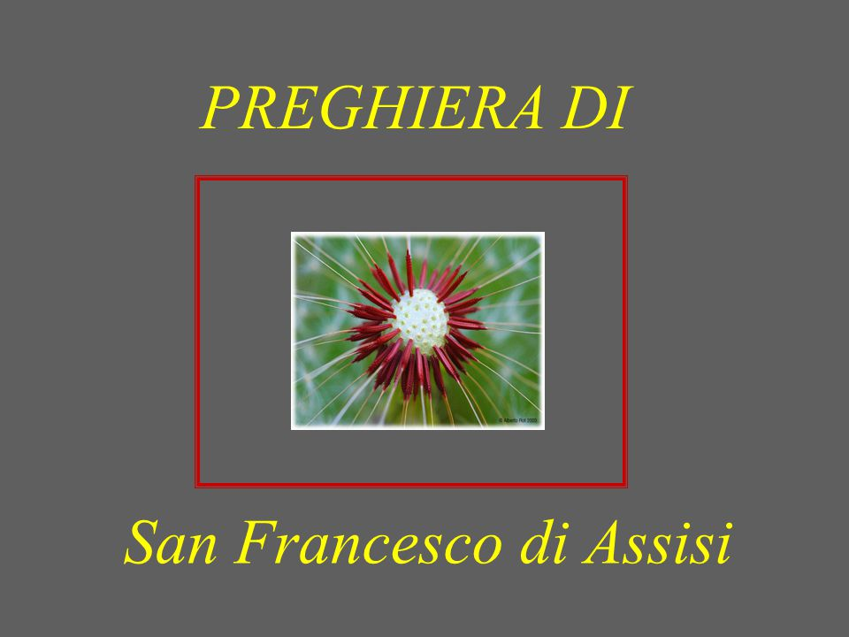 San Francesco di Assisi