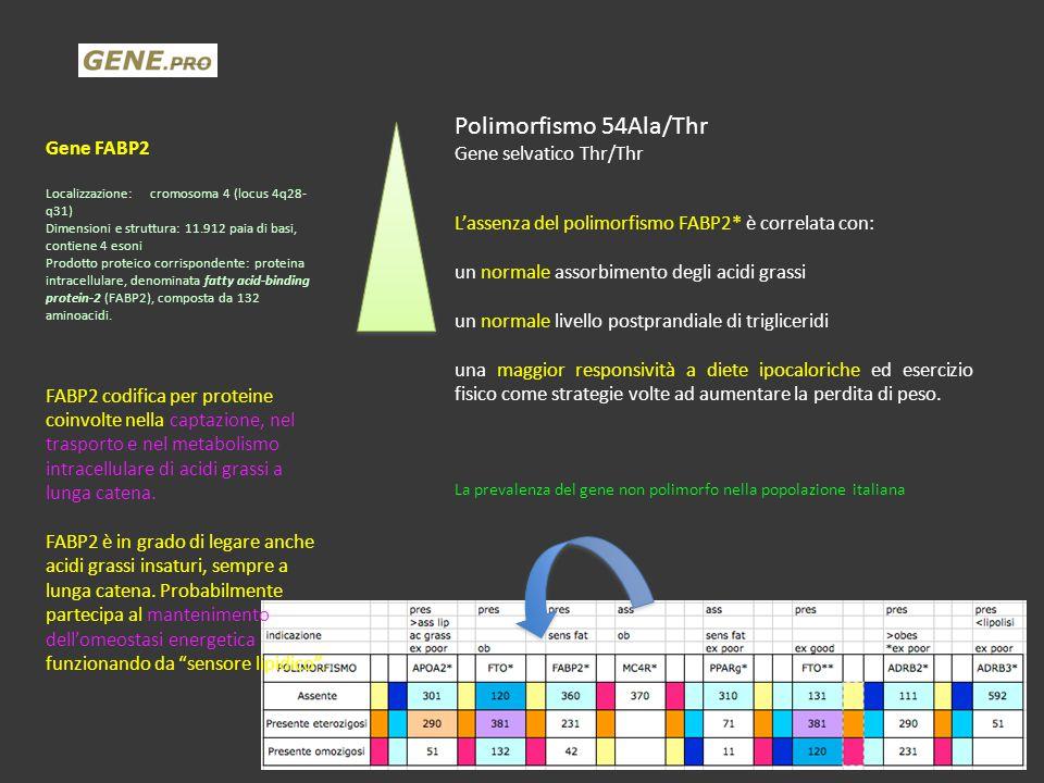Polimorfismo 54Ala/Thr Gene FABP2 Gene selvatico Thr/Thr
