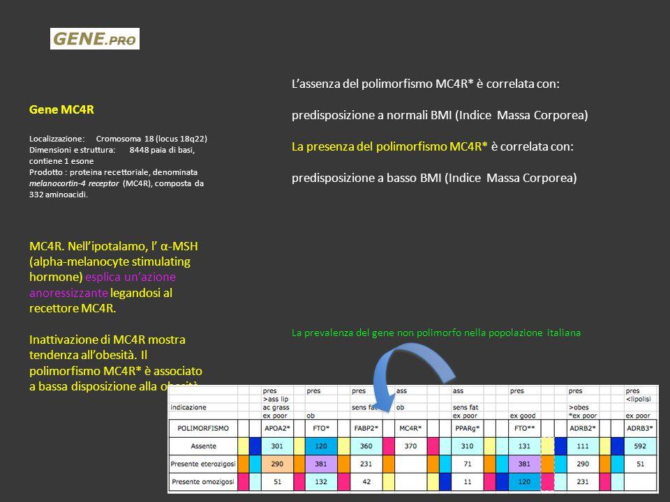 L'assenza del polimorfismo MC4R* è correlata con: