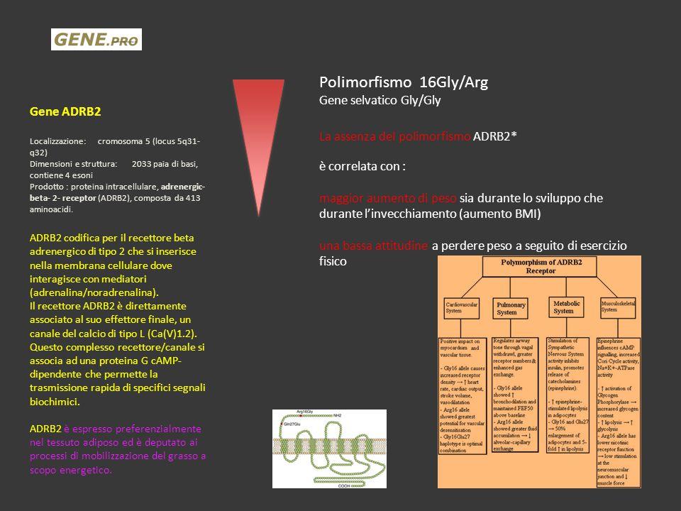 Polimorfismo 16Gly/Arg Gene selvatico Gly/Gly Gene ADRB2
