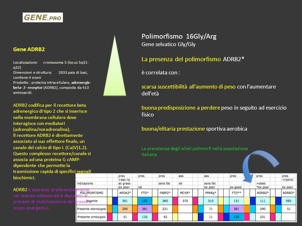 Polimorfismo 16Gly/Arg La presenza del polimorfismo ADRB2*