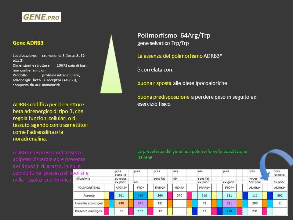 Polimorfismo 64Arg/Trp Gene ADRB3 gene selvatico Trp/Trp