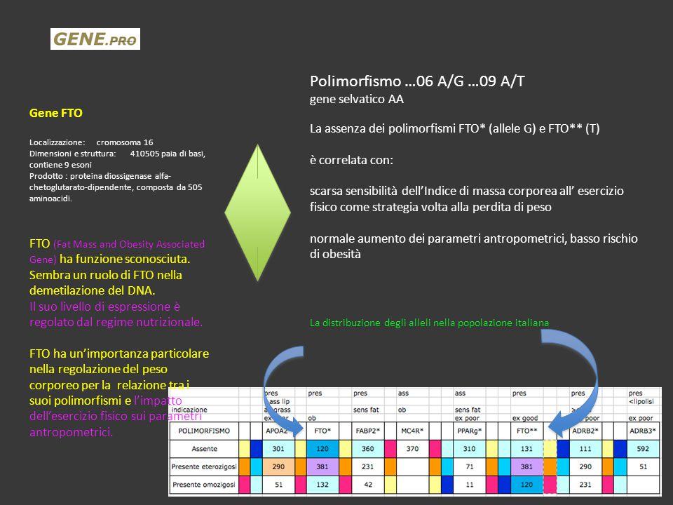 Polimorfismo …06 A/G …09 A/T