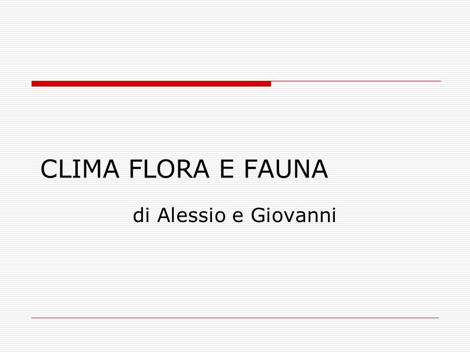CLIMA FLORA E FAUNA di Alessio e Giovanni