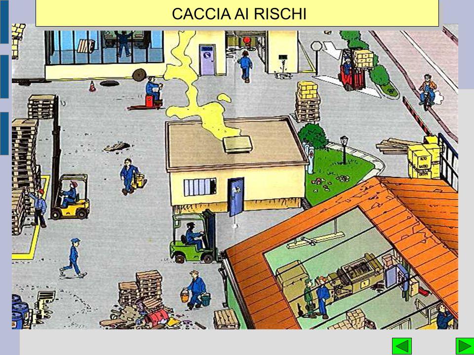 CACCIA AI RISCHI 50 50