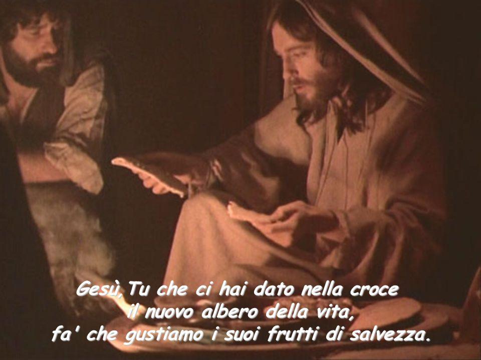 Gesù,Tu che ci hai dato nella croce il nuovo albero della vita,
