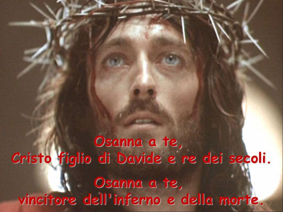Cristo figlio di Davide e re dei secoli.
