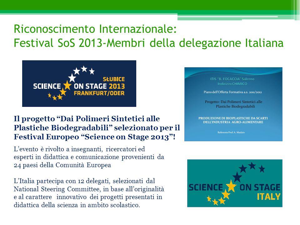 Riconoscimento Internazionale: Festival SoS 2013-Membri della delegazione Italiana