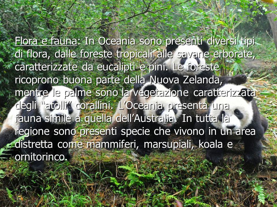 Flora e fauna: In Oceania sono presenti diversi tipi di flora, dalle foreste tropicali alle savane erborate, caratterizzate da eucalipti e pini.