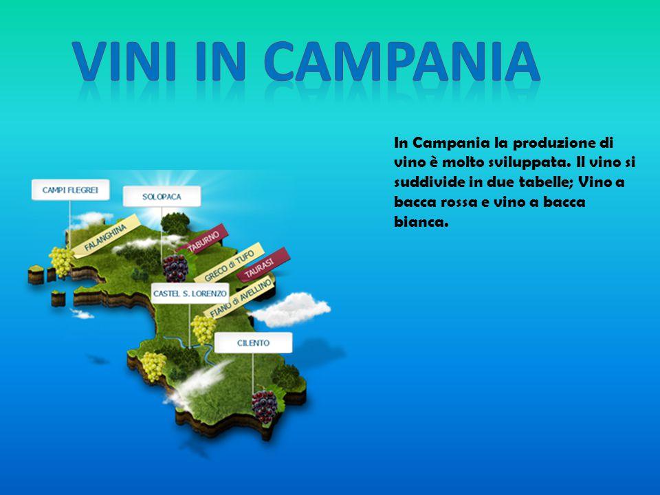 VINI IN CAMPANIA In Campania la produzione di vino è molto sviluppata.