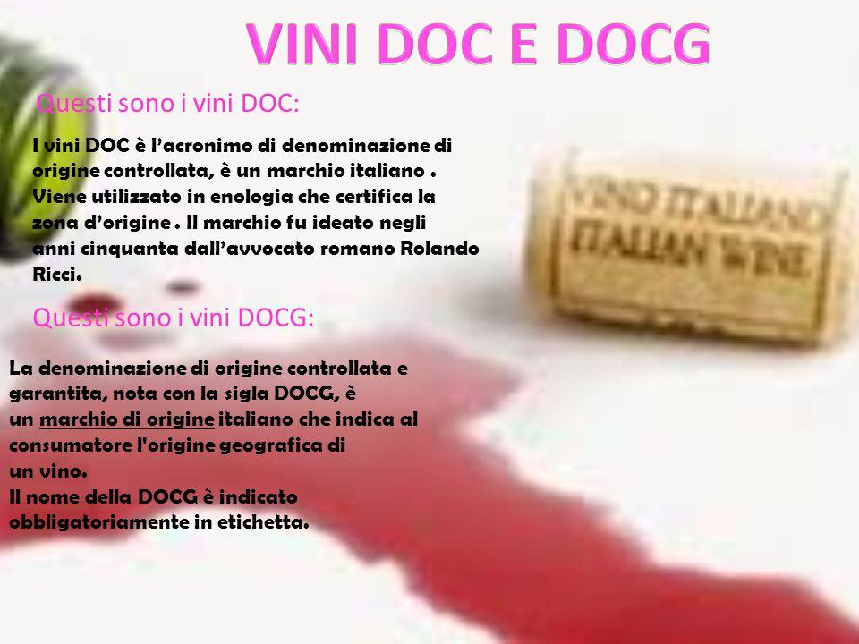 VINI DOC E DOCG Questi sono i vini DOC: Questi sono i vini DOCG: