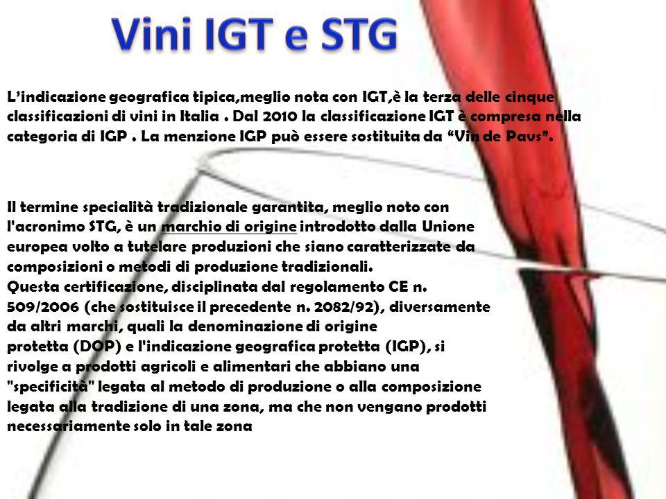 Vini IGT e STG