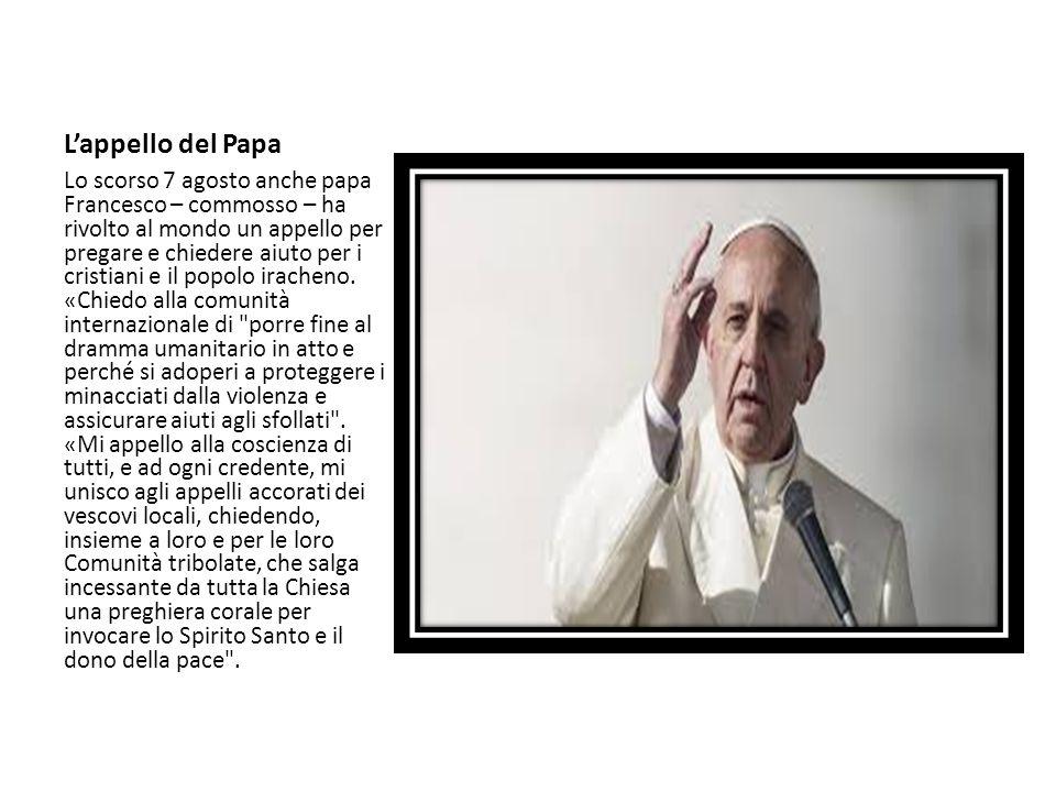L'appello del Papa
