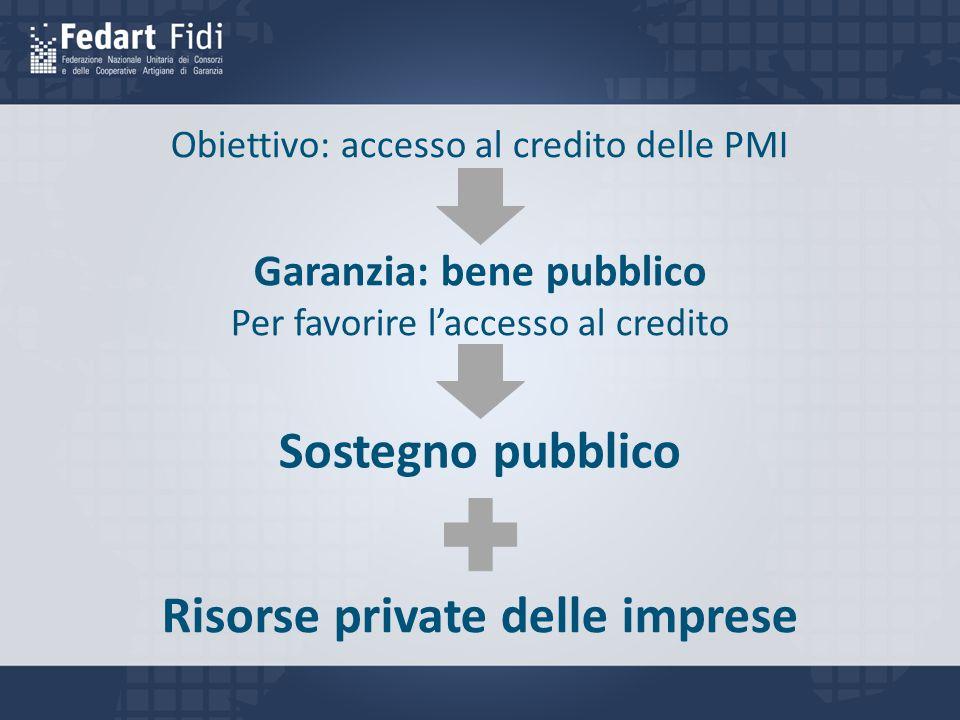 Garanzia: bene pubblico Risorse private delle imprese