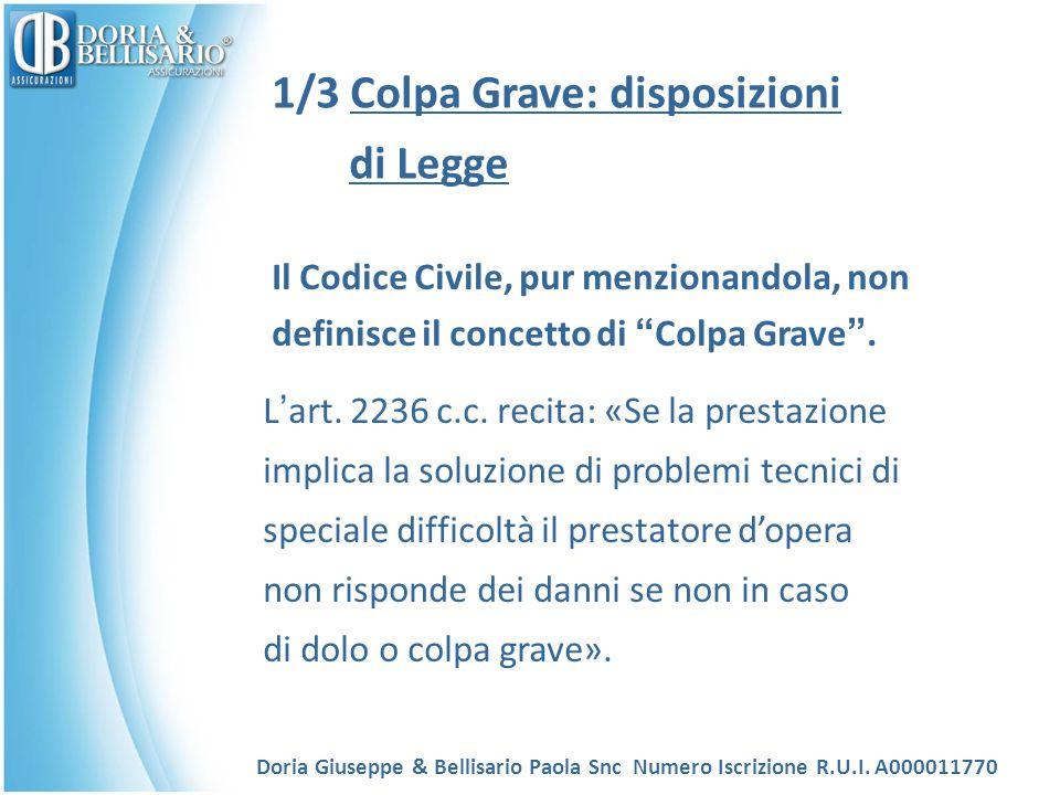 1/3 Colpa Grave: disposizioni