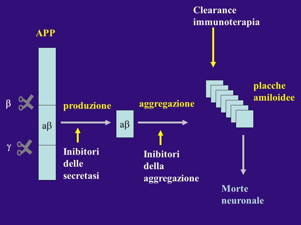 Clearance immunoterapia APP placche amiloidee b aggregazione