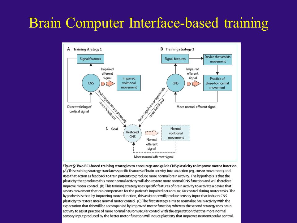 Brain Computer Interface-based training