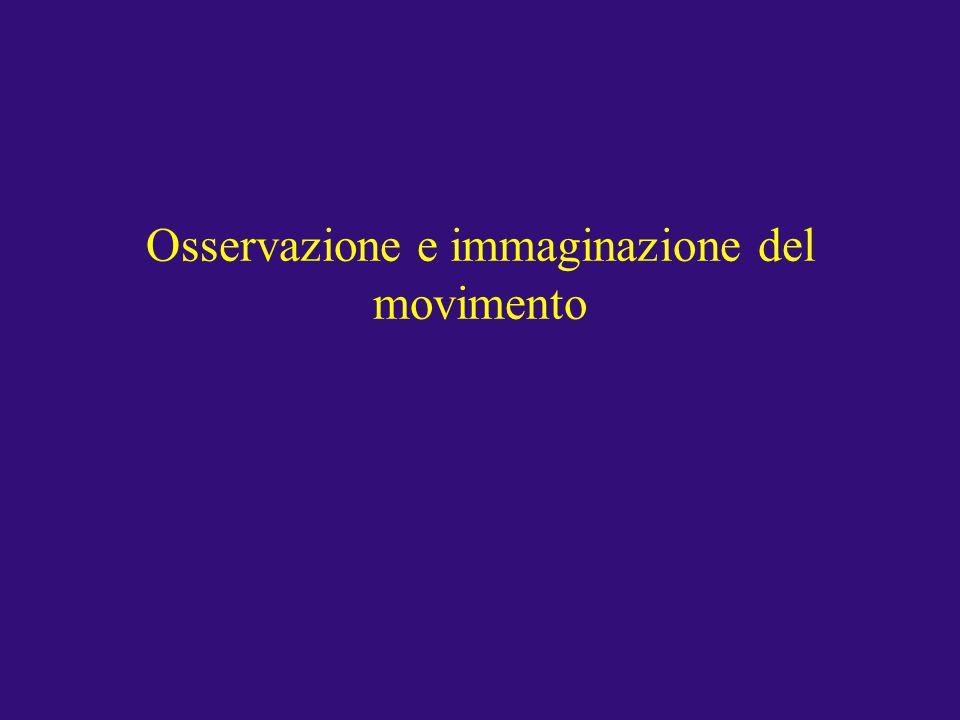 Osservazione e immaginazione del movimento