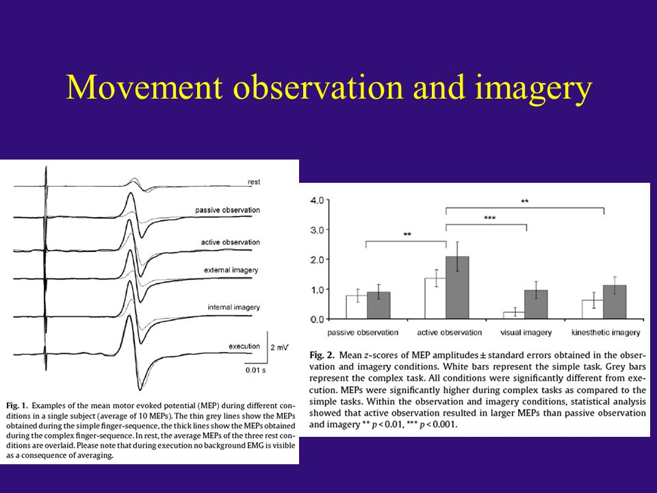 Movement observation and imagery