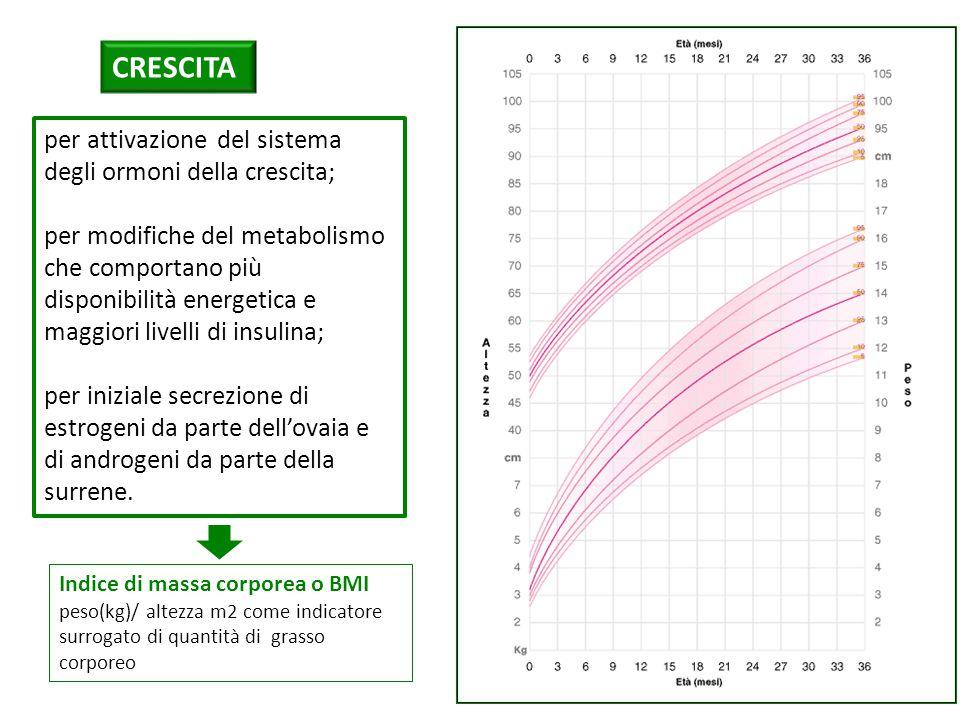 CRESCITA per attivazione del sistema degli ormoni della crescita;