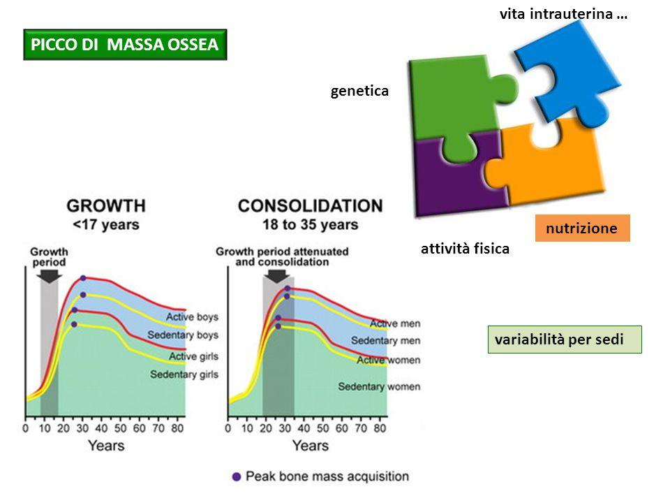 PICCO DI MASSA OSSEA vita intrauterina … genetica nutrizione