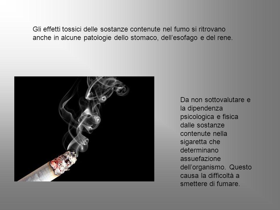 Gli effetti tossici delle sostanze contenute nel fumo si ritrovano anche in alcune patologie dello stomaco, dell'esofago e del rene.