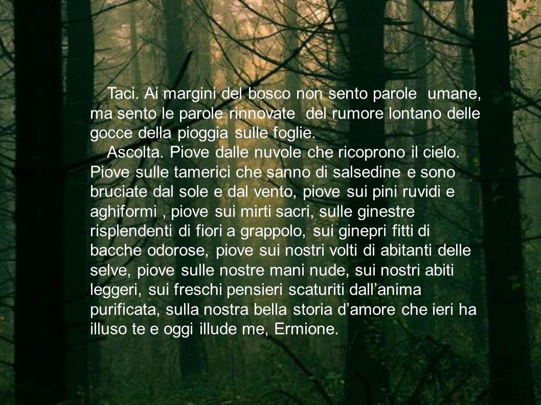Taci. Ai margini del bosco non sento parole umane, ma sento le parole rinnovate del rumore lontano delle gocce della pioggia sulle foglie.