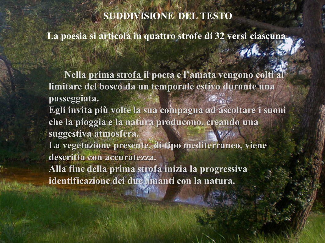 SUDDIVISIONE DEL TESTO