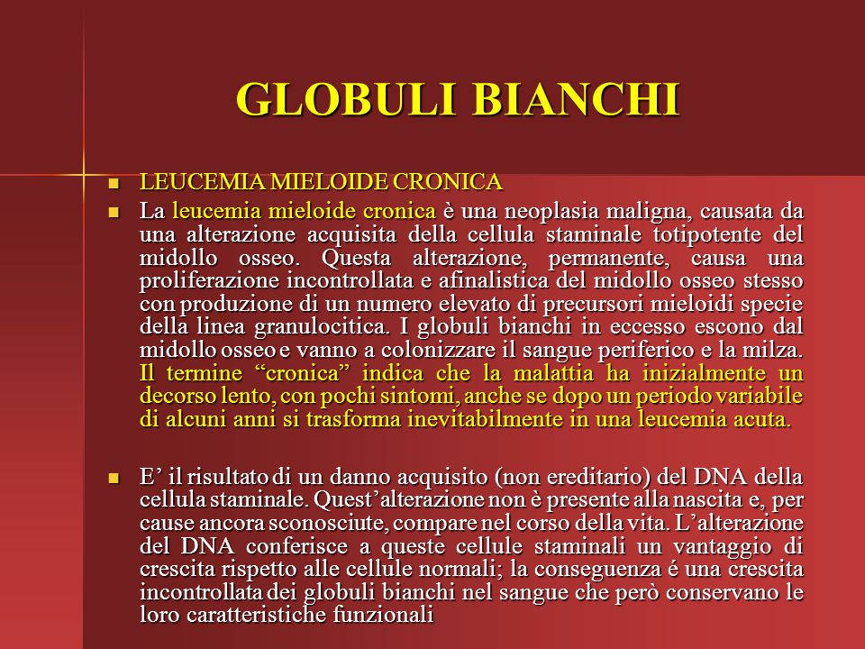 GLOBULI BIANCHI LEUCEMIA MIELOIDE CRONICA
