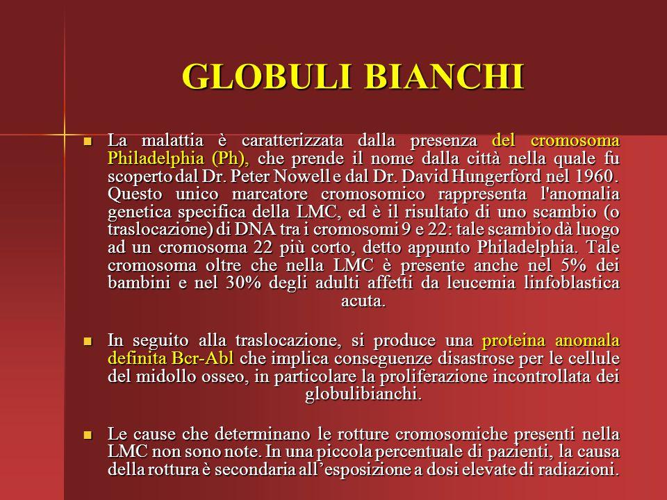 GLOBULI BIANCHI