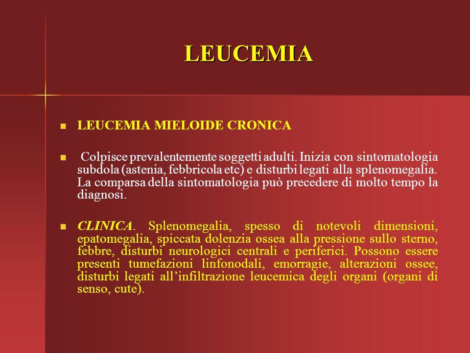 LEUCEMIA LEUCEMIA MIELOIDE CRONICA