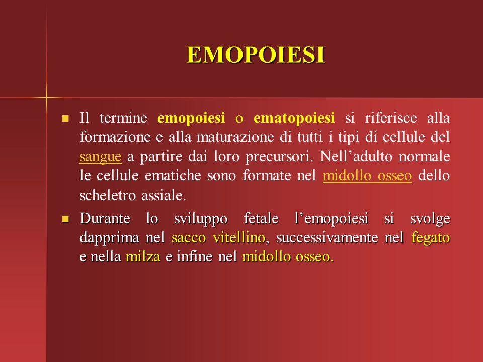 EMOPOIESI