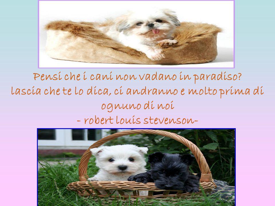 Pensi che i cani non vadano in paradiso