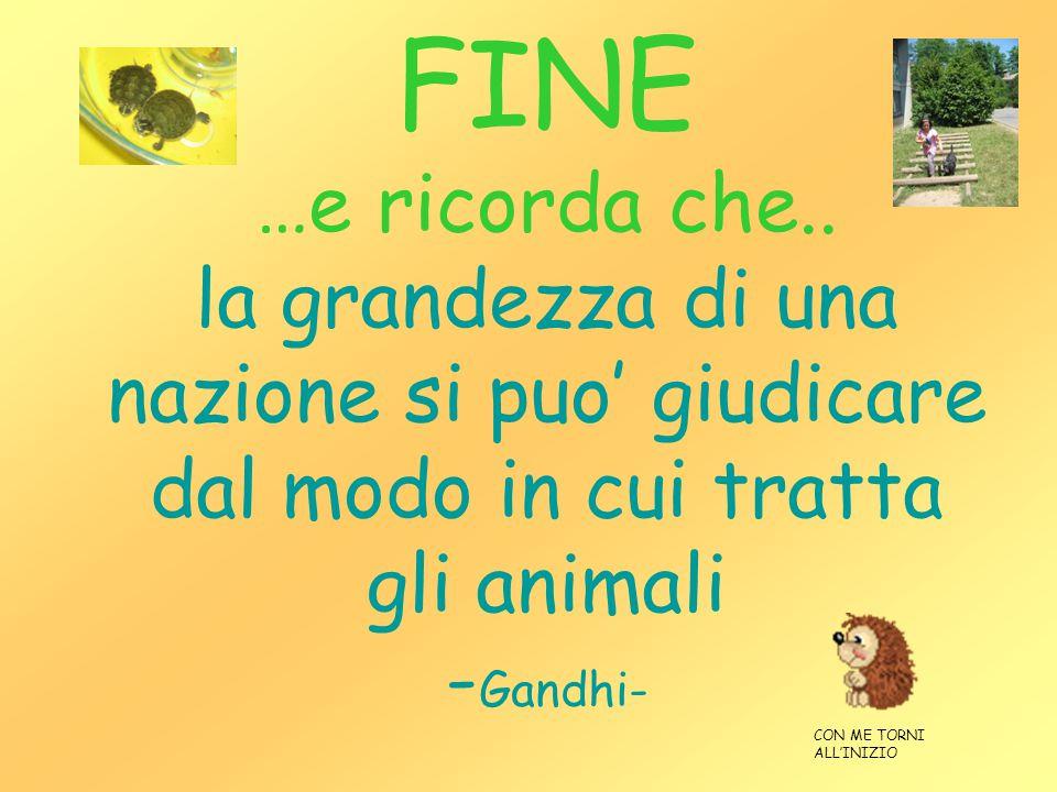 FINE …e ricorda che.. la grandezza di una nazione si puo' giudicare dal modo in cui tratta gli animali -Gandhi-