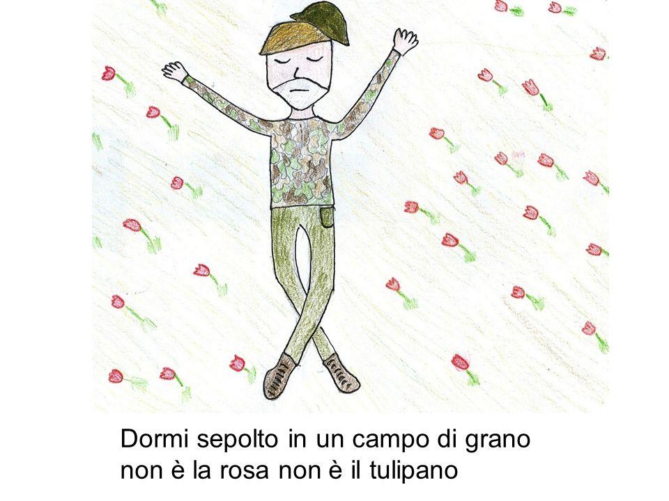 Dormi sepolto in un campo di grano non è la rosa non è il tulipano