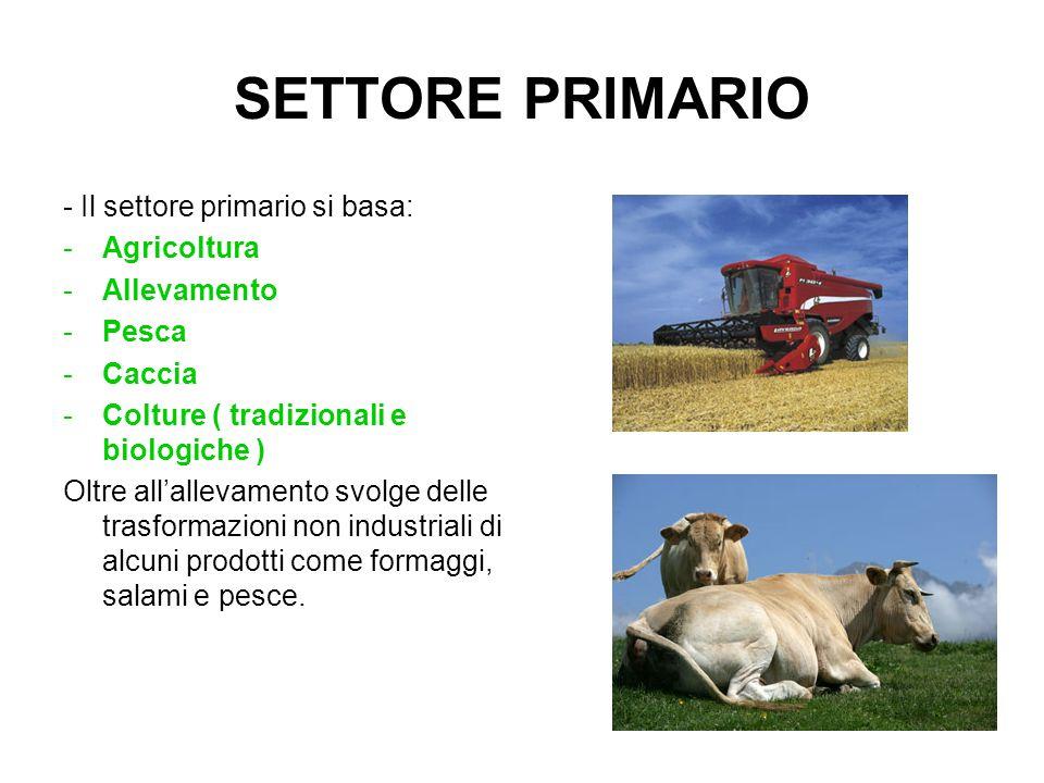 SETTORE PRIMARIO - Il settore primario si basa: Agricoltura