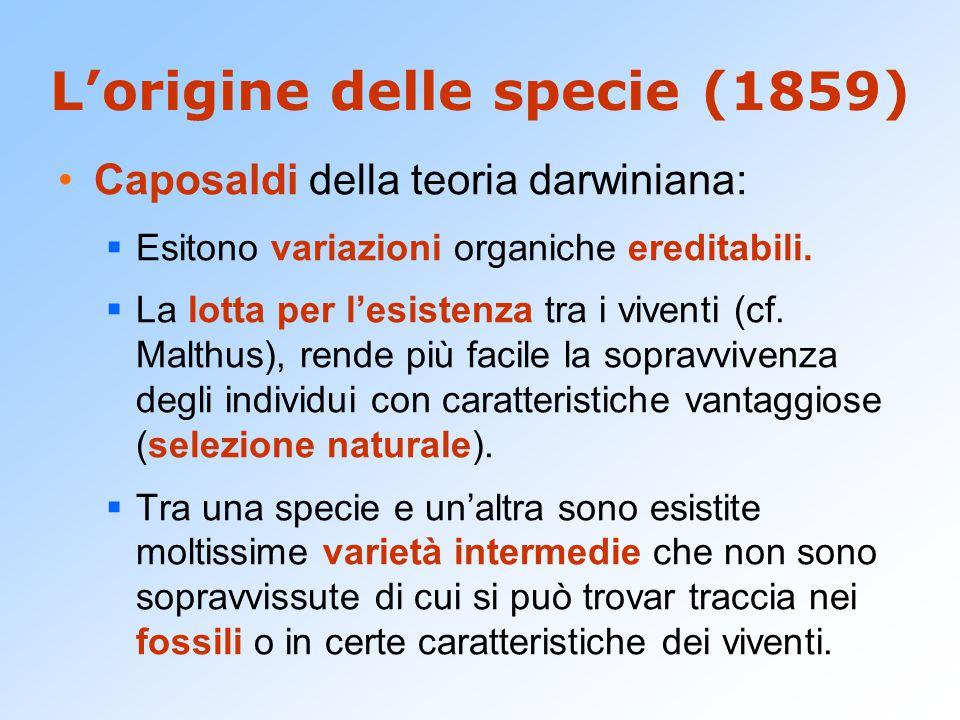 L'origine delle specie (1859)