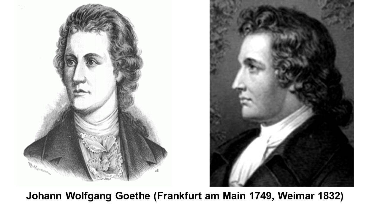 Johann Wolfgang Goethe (Frankfurt am Main 1749, Weimar 1832)